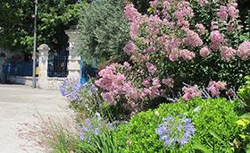 Jardins et balcons fleuris