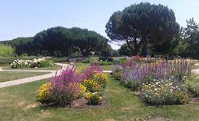 Journée des jardins