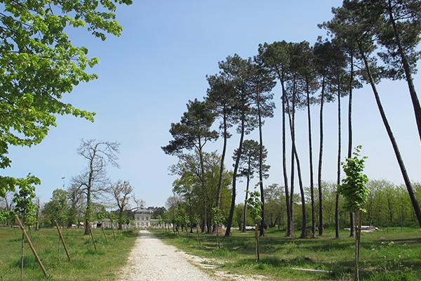 Parc du château de Belfort